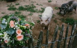fotografie-huwelijk-viva-lanterne-wahlwiller-zuid-limburg-2 1200x799